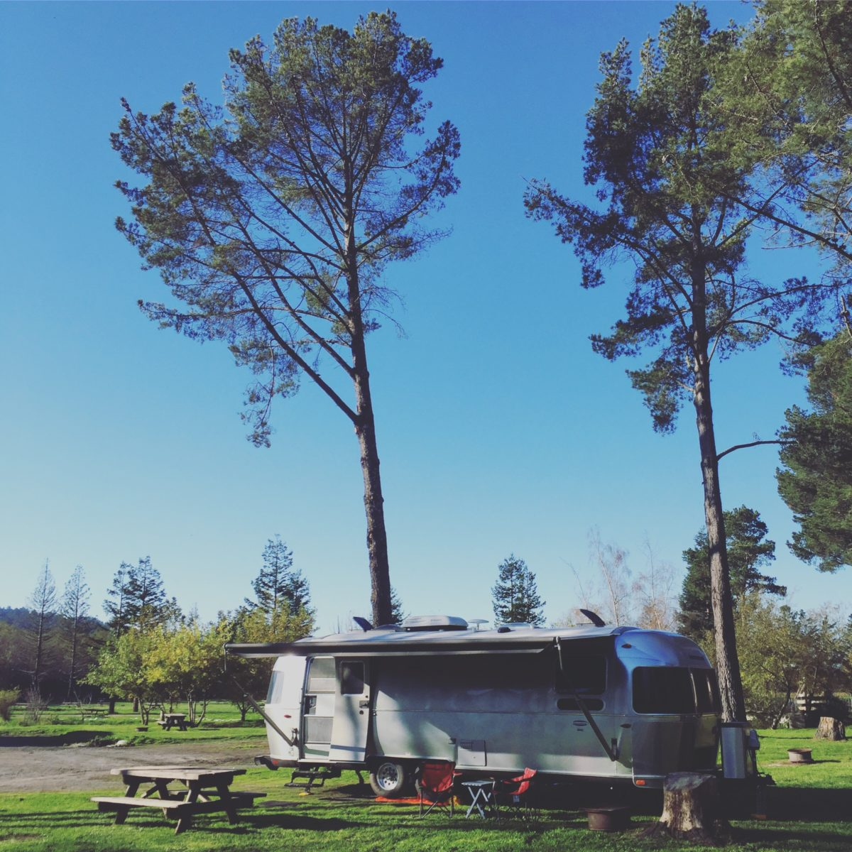 Olema Campground (near Point Reyes National Seashore, CA)